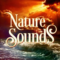 Beautiful Nature Music and Sounds — Nature Sounds,Nature Sounds Nature Music