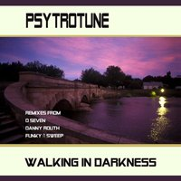 Walking In Darkness — Psytrotune