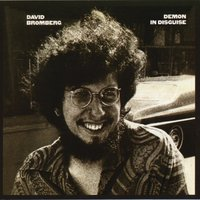 Demon In Disguise — David Bromberg