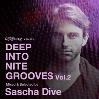 Deep into Nite Grooves, Vol.2: Mixed & Selected by Sascha Dive — Sascha Dive