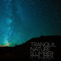 Tranquil Nature Slumber — Soothing Sounds