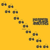 Chemicals — Harper and the Moths