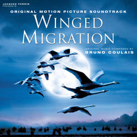 Winged Migration — Bruno Coulais