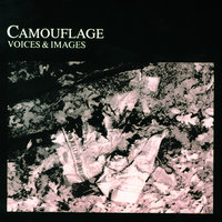 Voices & Images — Camouflage