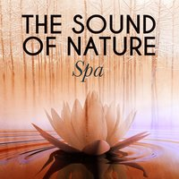 The Sound of Nature: Spa — Sleep Songs with Nature Sounds