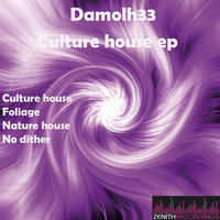 Culture house ep — Damolh33