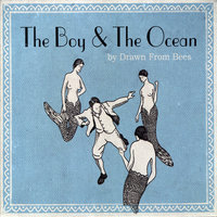 The Boy and the Ocean — Drawn From Bees