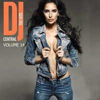 DJ Central - The Hits, Vol. 14 — сборник