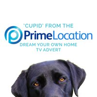 "Cupid (From the Prime Location ""Dream Your Own Home"" T.V. Advert) — Sam Cooke"