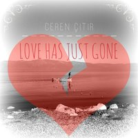 Love Has Just Gone — Ceren Çitir