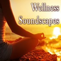 Wellness Soundscapes — Master Wu
