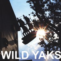 10 Ships (Don't Die Yet) — Wild Yaks