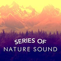 Series of Nature Sound — Nature Sound Series