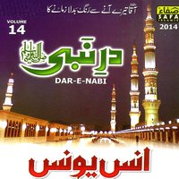 Dar E Nabi, Vol. 14 — Anas Younus