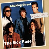 Shaking Street / The Double Shot — The Sick Rose