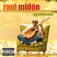 Synthesis — Raul Midon