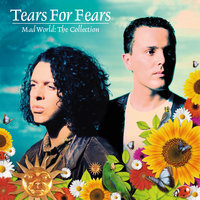 Mad World: The Collection — Tears For Fears