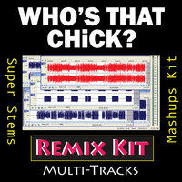 Who's That Chick? (Multi Tracks Tribute to David Guetta & Rihanna) — REMIX Kit