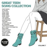 Great Teen Song Collection, Vol. 7 — сборник