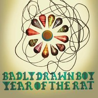 Year Of The Rat — Badly Drawn Boy