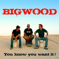 You Know You Want It — Bigwood