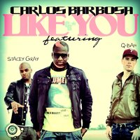 Like You — Stacey Gray, Carlos Barbosa, Qbah