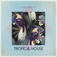 Tropical House, Vol. 3 — сборник