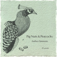 Pig Nuts & Peacocks — Anthea Simmons