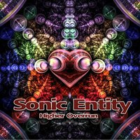 Higher Overrun - Single — Sonic Entity