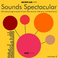 Sounds Spectacular: 25 Amazing N.M.L.C. Music Library Tracks, Volume 2 — сборник
