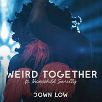 Down Low — Weird Together