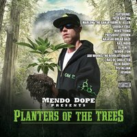 Planters of the Trees — Mendo Dope