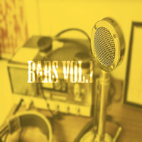 Bars Vol.1 — Bär