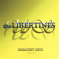 Greatest Hits — the Libertines US