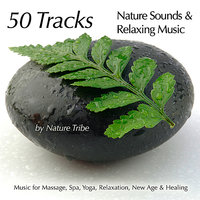 50 Tracks:  Nature Sounds & Relaxing Music For Massage, Spa, Yoga, Relaxation, New Age & Healing — Nature Tribe