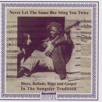Never Let The Same Bee Sting You Twice - Blues, Ballads, Rags & Gospel In The Songster Tradition — Various Artists - Document Records