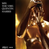 Mix the Vibe: Quentin Harris Timeless Re-Collection — Quentin Harris