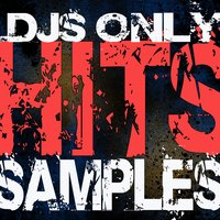 DJs Only - Hits Samples — Dj Remix Factory