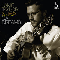 Cat Dreams — Java, Jamie Taylor