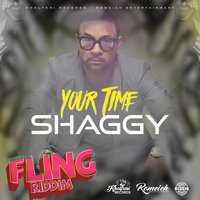Your Time — Shaggy