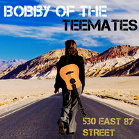 530 East 87 Street — Bobby of the Teemates