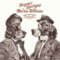 Sad but True — Delaney Davidson, Marlon Williams