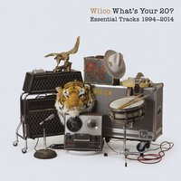 What's Your 20? Essential Tracks 1994 - 2014 — Wilco