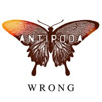 Wrong — Antipoda