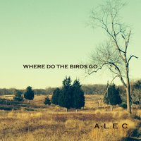 Where Do the Birds Go — Alec