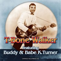 You're Gonna Need My Help Someday — T-Bone Walker