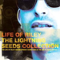 Life Of Riley - The Lightning Seeds Collection — The Lightning Seeds