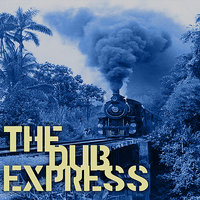 The Dub Express Vol 15 Platinum Edition — Ronnie Davis