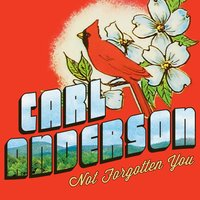 Not Forgotten You — Carl Anderson
