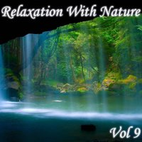 Relaxation With Nature, Vol. 9 — сборник